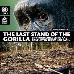 copertina report gorilla
